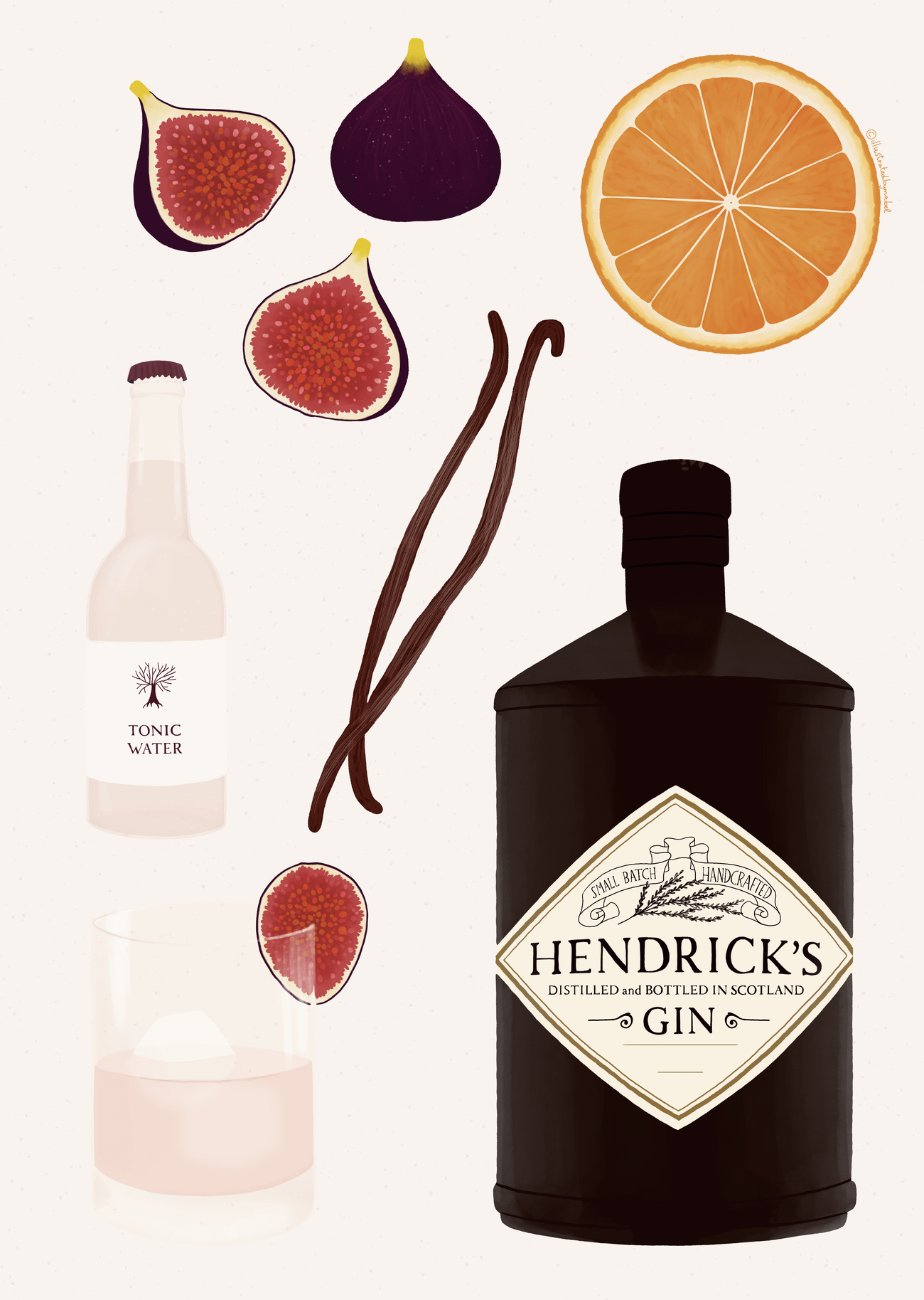 Illustration of fig an vanilla gin drink with Hendrick's gin bottle